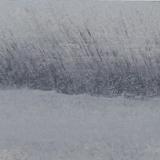 31buccolique crepuscule 29,5X5 copie